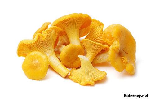 Лечение от паразитов грибами лисичками