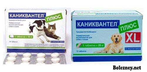 Цена и способ применения лекарства Каниквантел Плюс для кошек