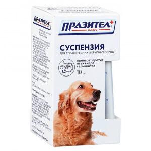 Лекарства от глистов для собаки