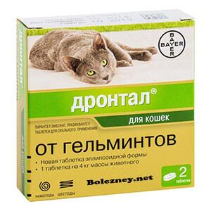 Дронтал от глистов у кошки