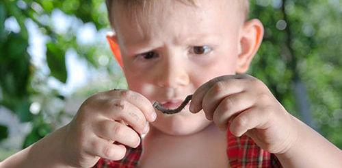 Виды глистов у детей. Какие препараты помогут их вывести?
